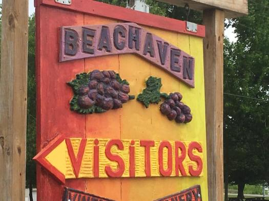 beachaven winery6
