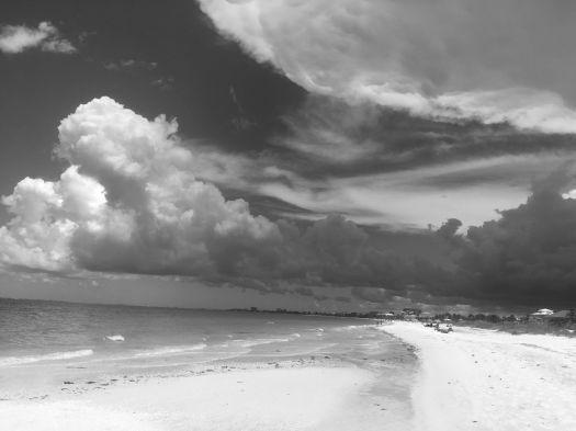 storm b&w