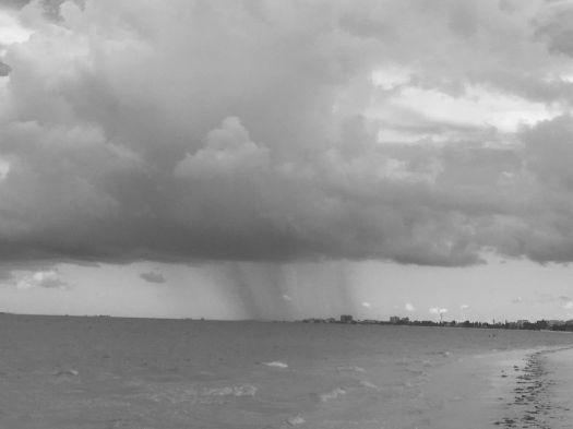 storm2 b&w