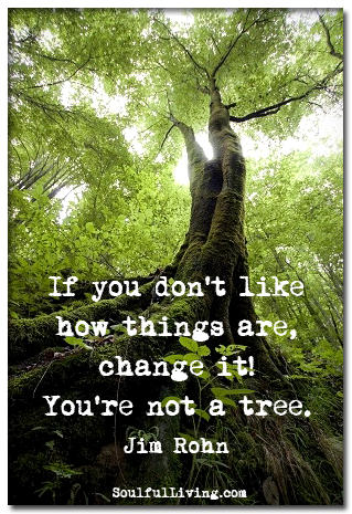 If-you-dont-like-how-things-are-change-it-Youre-not-a-tree-Jim-Rohn