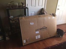 cot in box